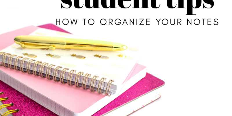 Awesome Student Tips: How to Organize Your University Notes