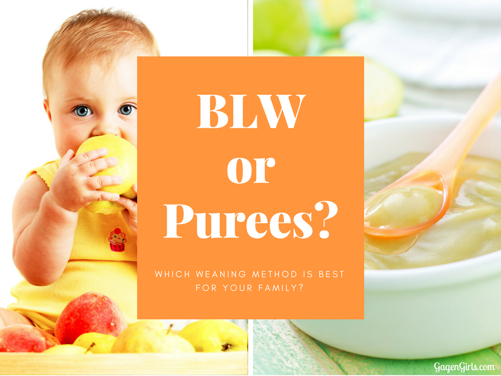 Are you a first time mom? One of the big decisions coming your way is Baby Led Weaning vs Traditional Purees. Read which might be best for your family. @GagenGirls.com